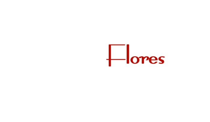 David Aguilar Flores Real Estate