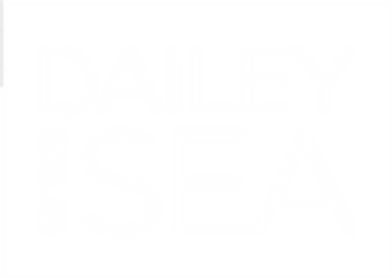 DaileybytheSea // Suzi Dailey